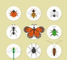 精致昆虫图标