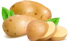 新鲜马铃薯与切片矢量素材