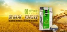 金黄色食品类大米产品焦点图