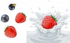 草莓 蓝莓 牛奶花
