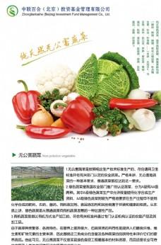 有机蔬菜展板