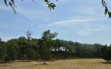 圆明园风景