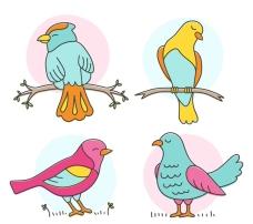 彩色鸟类设计矢量素材