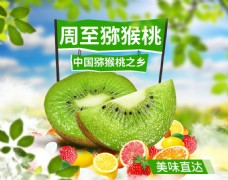 水果猕猴桃首焦