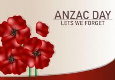 澳洲花庆祝背景