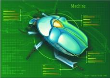 甲壳虫 矢量图